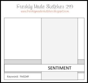 FMS 249 Sketch