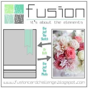 fusion-challenge
