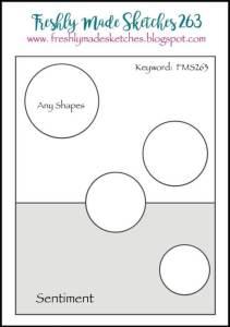fms-263-sketch