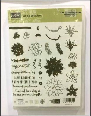 succulent-garden-suite-3-stamps-n-lingers