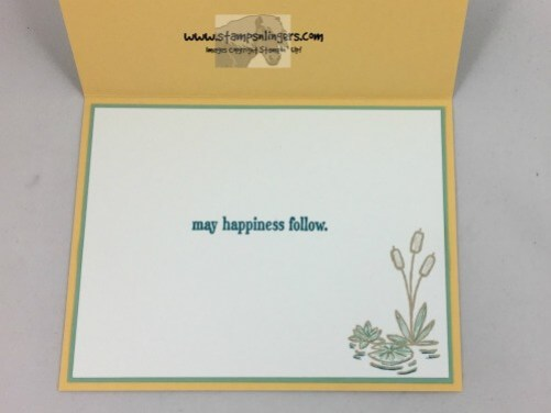 swan-lake-any-occasion-card-5-stamps-n-lingers