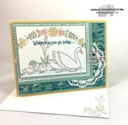 swan-lake-any-occasion-card-6-stamps-n-lingers