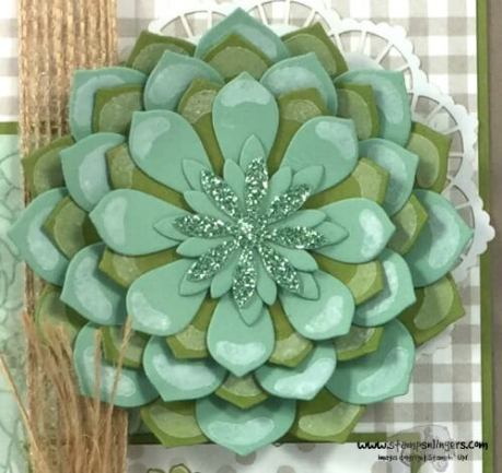 succulent-garden-mothers-day-8-stamps-n-lingers