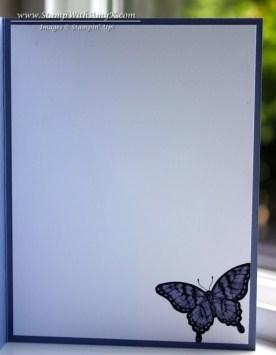 Papillon Potpourri 2