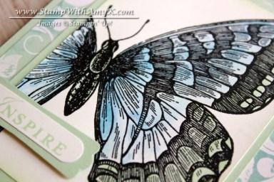 Swallowtail 1