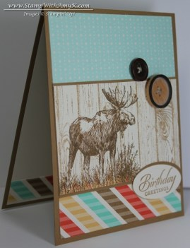 Walk in the Wild 1 - Stamp With Amy K