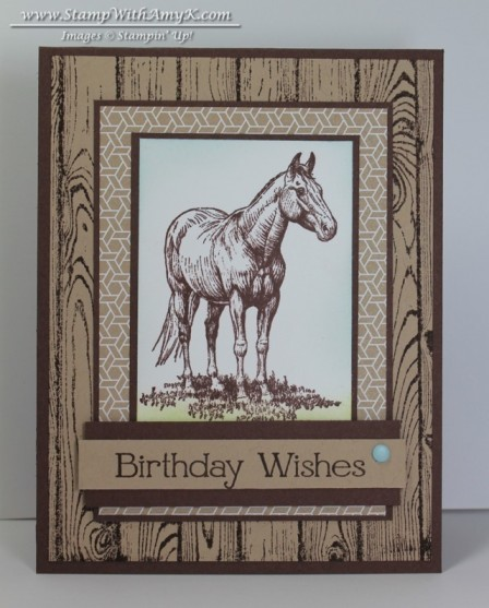 Horse Frontier - Stamp With Amy K
