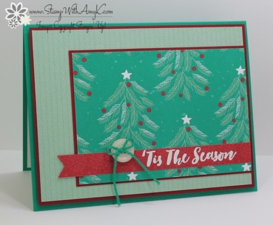 christmas-pines-stamp-with-amy-k