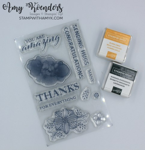 Stampin' Up! June Paper Pumpkin Kit - Expressions In Color