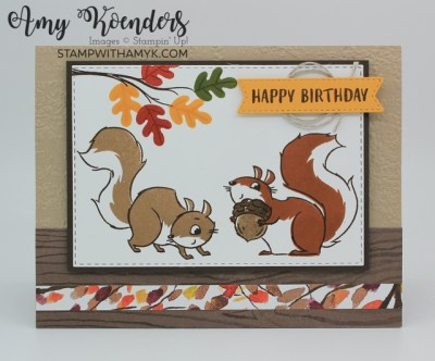 Stampin' Up! Nuts About Squirrels Birthday Card