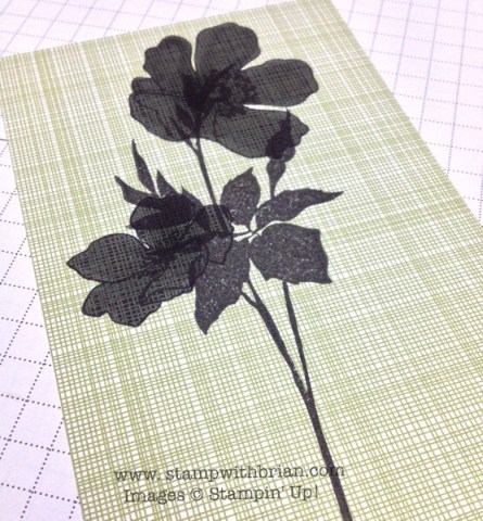 Fabulous Florets, Banner Greetings (Hostess), Stampin' Up!, Brian King