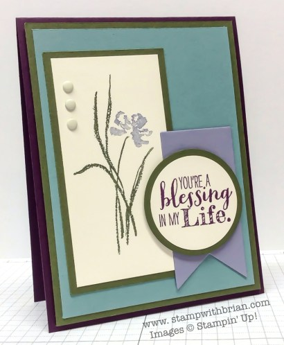 Love & Sympathy, Blessed by God, Stampin' Up!, Brian King, FMS144, PP204