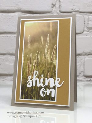 Sunshine Wishes Thinlits, Serene Scenery Designer Series Paper Stack, Stampin' Up!, Brian King, GDP040