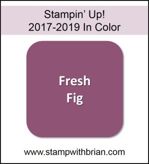 Fresh Fig, Stampin' Up! 2017-2019 In Color, www.stampwithbrian.com