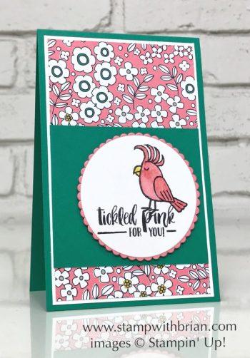 Bird Banter, Fabulous Flamingo, Stampin' Up!, Brian King