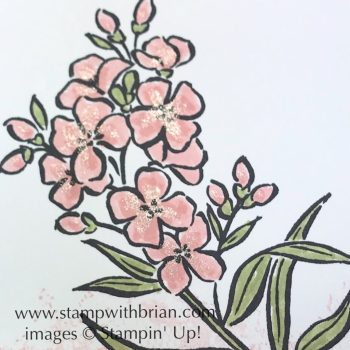 A touch of Clear Wink of Stella Glitter Brush adds amazing shine to the smallest flowers, Southern Serendade, Stampin' Up!, Brian King
