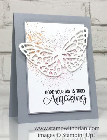 Big Wishes, Touches of Texture, Springtime Impressions Thinlits Dies, Stampin' Up!, Brian King