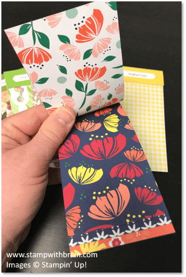2019 Occasions Catalog Designer Series Paper Swatch Books, Stampin' Up!, Brian King