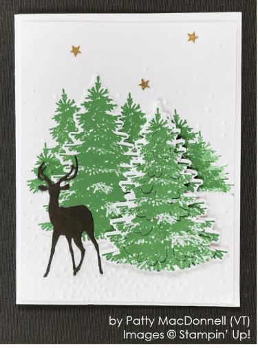 by Patty MacDonnell, Stampin' Up! One-by-One Holiday Card Swap