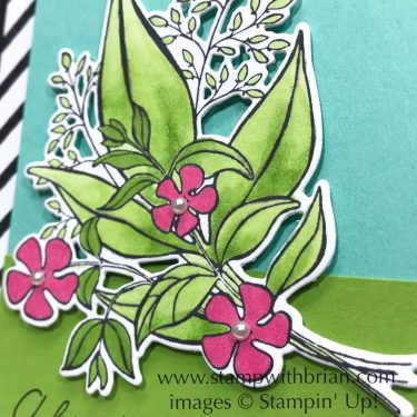Wonderful Romance, Stampin' Up!, Brian King