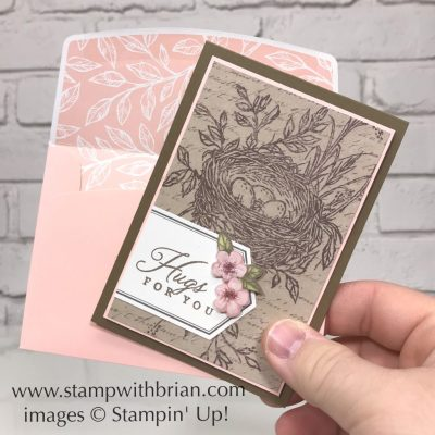 Hugs from Shelli Paper Pumpkin Kit - May 2019, Alternative Project, Stampin' Up!, Brian King