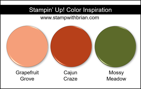 Stampin Up! Color Inspiration - Grapefruit Grove, Cajun Craze, Mossy Meadow