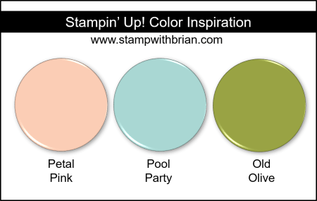 Stampin' Up! Color Inspiration - Petal Pink, Pool Party, Old Olive