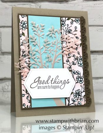 Tasteful Textures, Bird Ballad Designer Series Paper, Stampin' Up!, Brian King