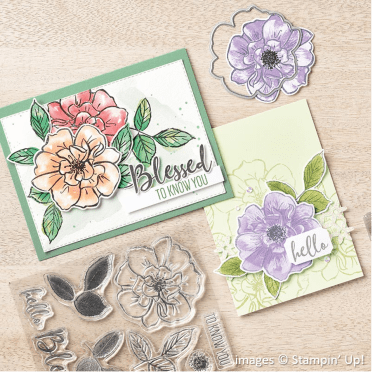 To a Wild Rose Bundle, Stampin' Up!, Catalog Samples