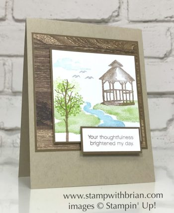 My Meadow, Daisy Delight, Stampin Up!, Brian King