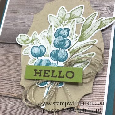 Forever Fern Bundle, Stampin Up!, Brian King