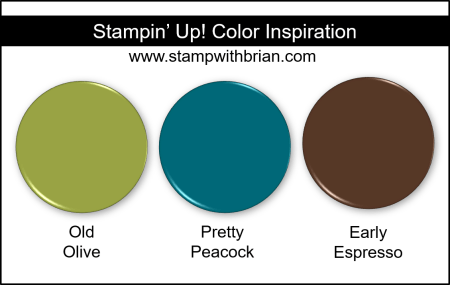 Stampin Up! Color Inspiration - Old Olive, Pretty Peacock, Early Espresso