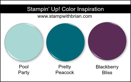 Stampin' Up! Color Inspiration - Pool Party, Pretty Peacock, Blackberry Bliss