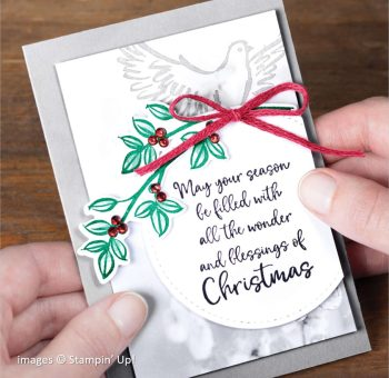 Dove of Hope Bundle, Stampin Up! samples 2