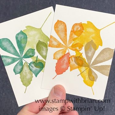 Love of Leaves, Stampin Up!, Brian King