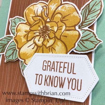 To a Wild Rose, Stampin Up!, Brian King