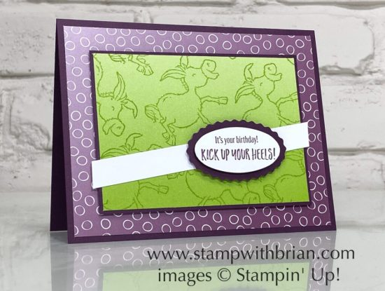 Darling Donkeys, Zany Zebras, Stampin Up!, Brian King