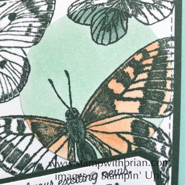 Butterfly Brilliance, Many Messages, Stampin Up!, Brian King, spotlight technique