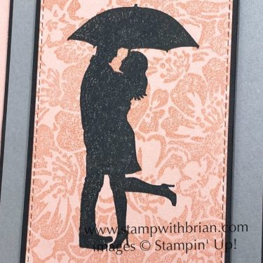 Silhouette Scenes, Last a Lifetime, Wild Roses, Stampin Up!, Brian King, anniversary card