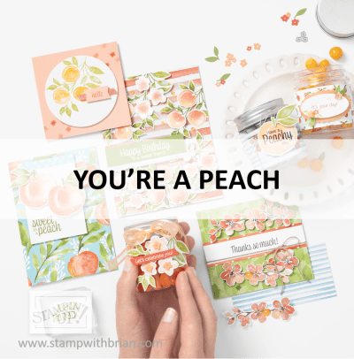 You're a Peach Suite, Stampin Up! 2021 Annual Catalog