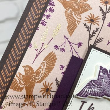 Beauty of Tomorrow Bundle, Blackberry Beauty, Stampin Up!, Brian King, sympathy card