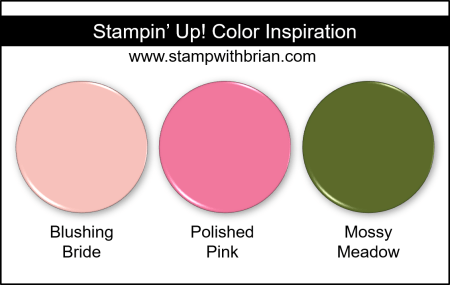 Stampin Up! Color Inspiration - Blushing Bride, Polished Pink, Mossy Meadow