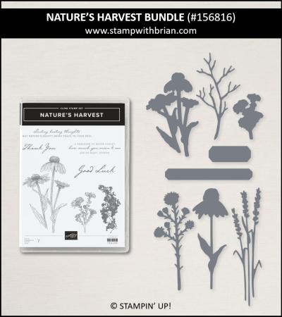 Nature's Harvest Bundle, Stampin Up! 156816