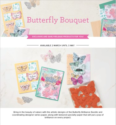 Butterfly Brilliance Flyer