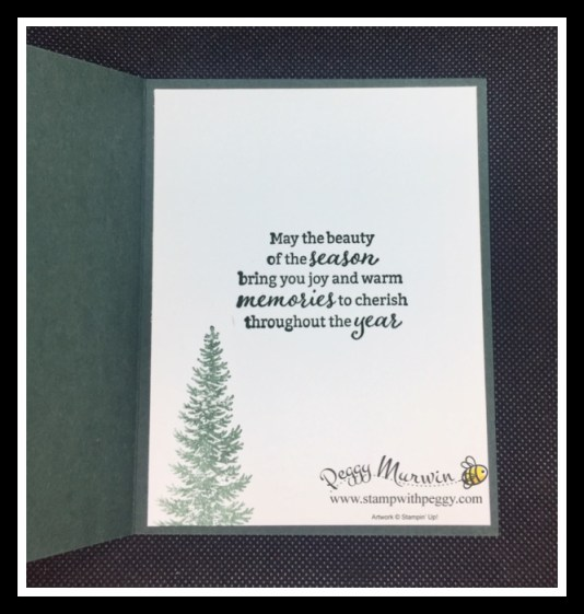 Evergreen Elegance Stamp Set, Tidings of Christmas Designer Paper, Christmas, Stamp with Peggy