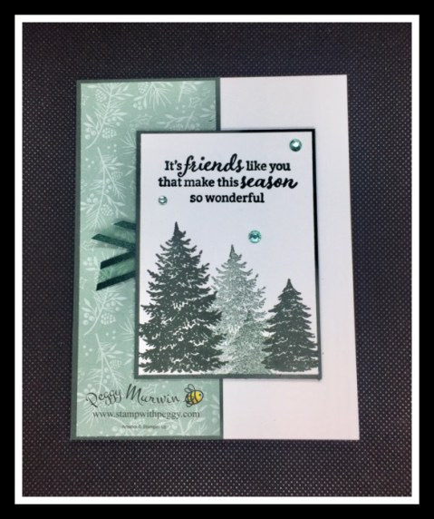 Evergreen Elegance Stamp Set, Tidings of Christmas Designer Paper, Christmas Cards, Stamp with Peggy