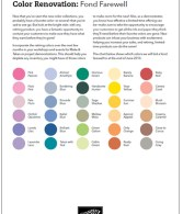 color-renovattion2