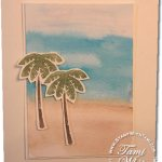 VIDEO TUTORIAL: Tropical Color Washing