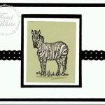 Zoo Review – Zebra Card