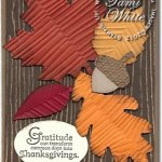 VIDEO TUTORIAL: Autumn Accents Leaves Card